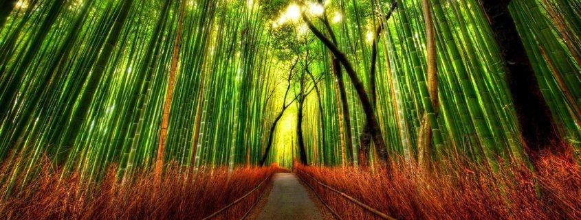 Energetinė Reiki terapija - Gydanti Reiki energija - Reiki masažas - Gydomieji Reiki seansai - Kas yra Reiki gydymo metodas - Reiki gydymas energija - Reiki seansas - Alternatyvus gydymas Reiki universali visatos energija